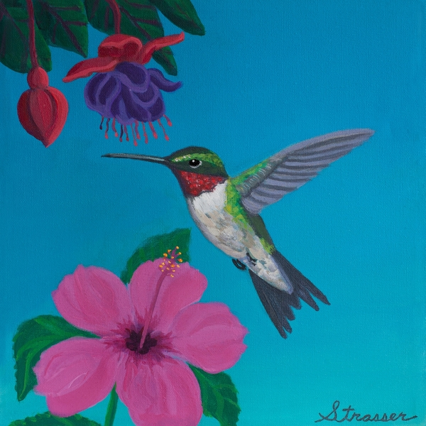 Hummingbird Heaven Print by Frank Strasser