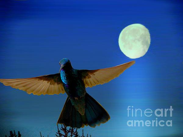 Hummingbird Moon II Print by Al Bourassa