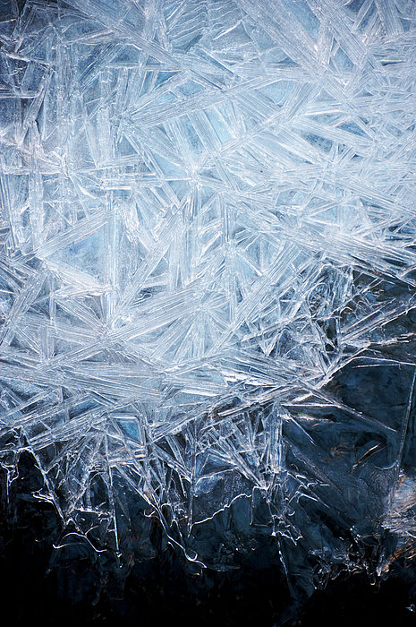 Ice Crystal Patterns Print by Skye Hohmann
