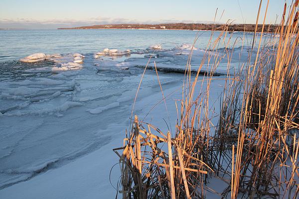 Ice Shoreline Print by Merv Scoble