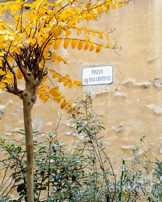 Il Piazza Malcontenti Print by Michael Flood