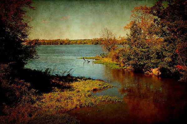 Milena Ilieva - Illinois River