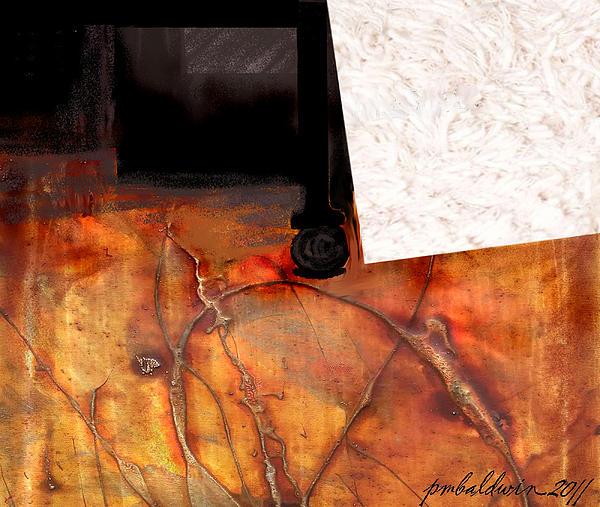 Patrice Baldwin - Imparting a Stillness