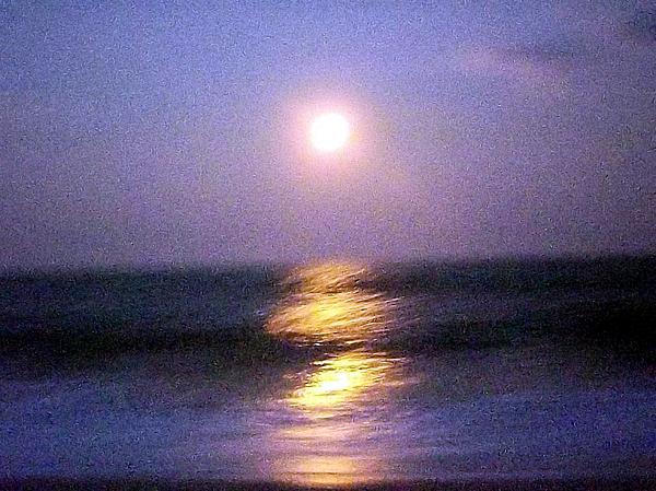Michael Degenhardt - Impressionistic Moon