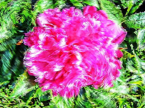 Impressionistic  Peony Print by Barbara Griffin