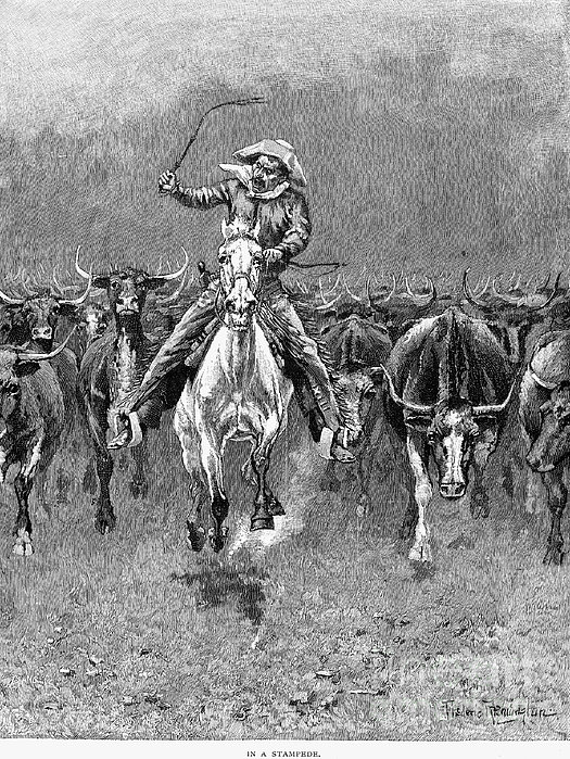 In A Stampede Print by Granger