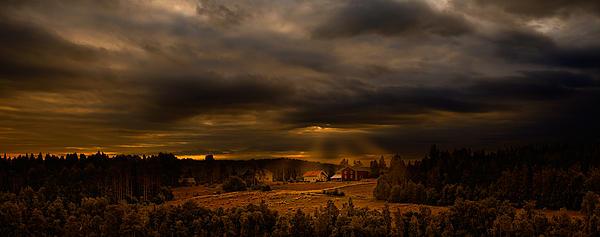 In The Darkness Print by Marek Czaja