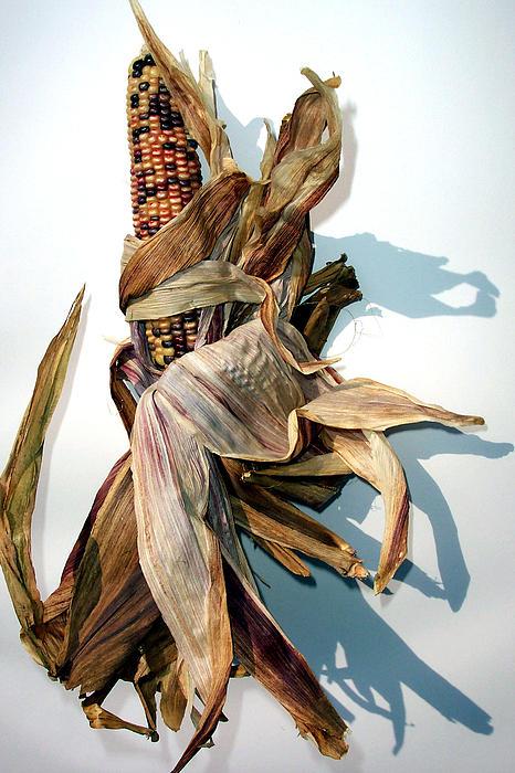 Mary Gillis - Indian Corn 1