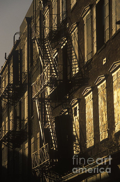 Inner City Fire Escapes Print by Will & Deni McIntyre