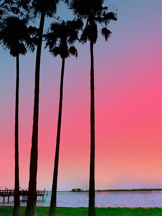 Intercoastal Sunset Print by Bill Cannon