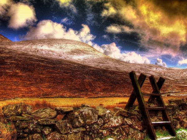 Into The Wild Print by Kim Shatwell-Irishphotographer