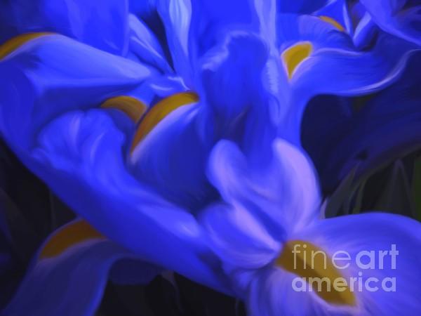 Iris Sparkle Print by Roxy Riou