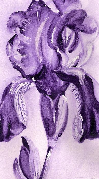 Marsha Woods - Iris Study in Purple