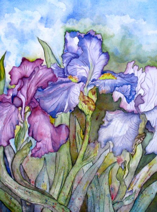 Fei Liu - Iris Watercolor Paintings Purple Irises