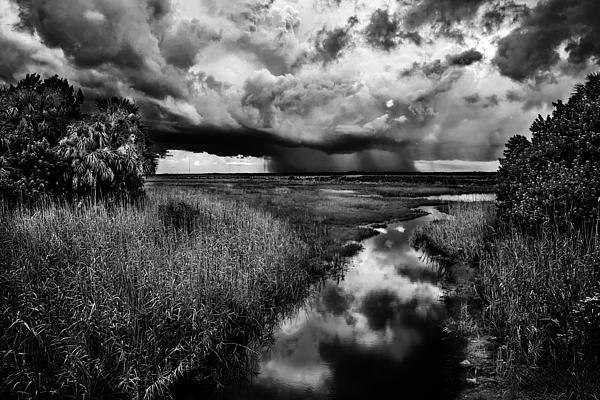 Isolated Shower - Bw Print by Christopher Holmes