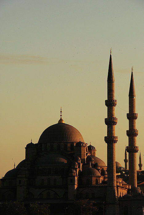 Istanbul Yeni Cami (new Mosque) Print by Andrea Cavallini