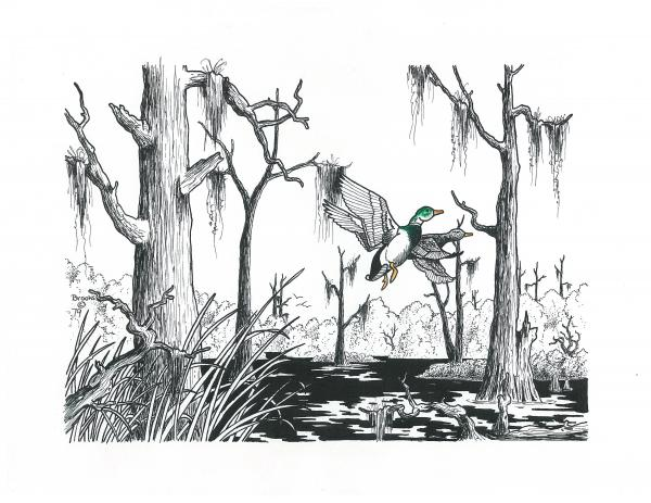 Its A Swamp Thing. Drawing  - Its A Swamp Thing. Fine Art Print