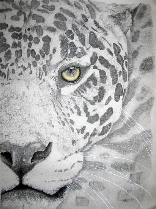 Jaguar Print by Mayhem Mediums