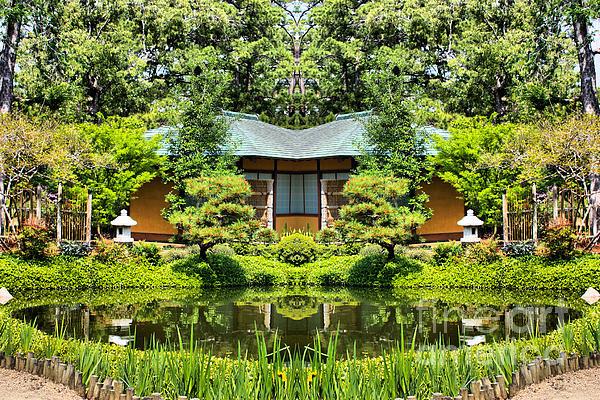 Japanese Garden At Hermann Park Houston Texas By Cynthia Broomfield