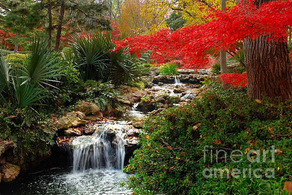 Japanese Garden Brook Print by Jon Holiday