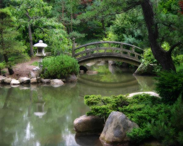 Japanese gardens on pinterest koi ponds koi and zen gardens for Japanese garden with koi pond