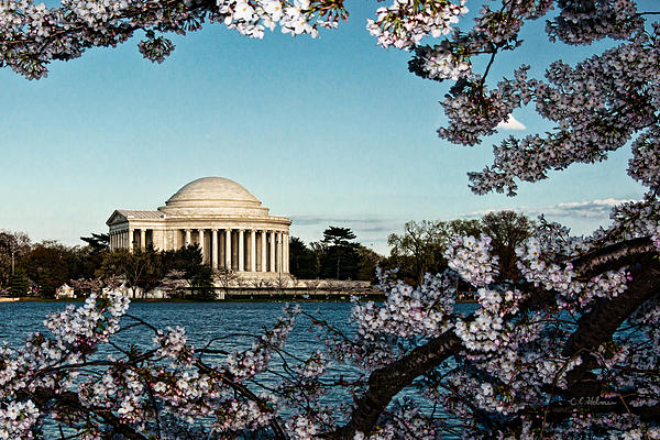Jefferson Memorial In Spring Print by Christopher Holmes