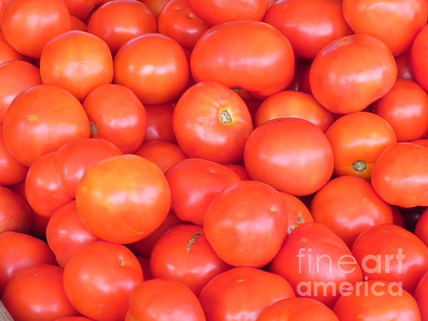 Chrisann Ellis - Jeresy Tomatoes