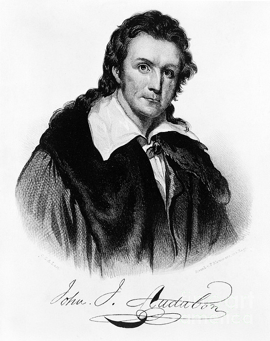 John James Audubon, French-american Print by Photo Researchers, Inc.