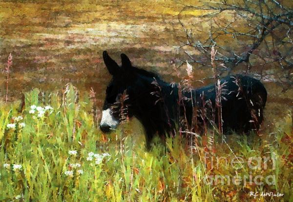 Just Chillin' Print by RC DeWinter