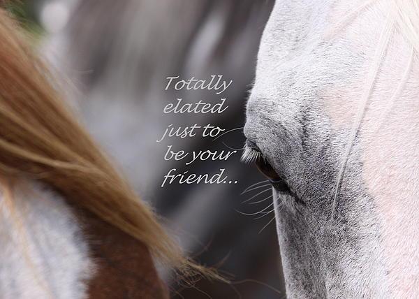 Just Friends Print by Travis Truelove