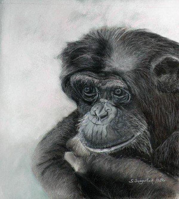 Just Thinking Print by Sandra Sengstock-Miller