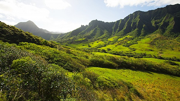 Kaaawa Valley And Kualoa Ranch Print by Dana Edmunds - Printscapes