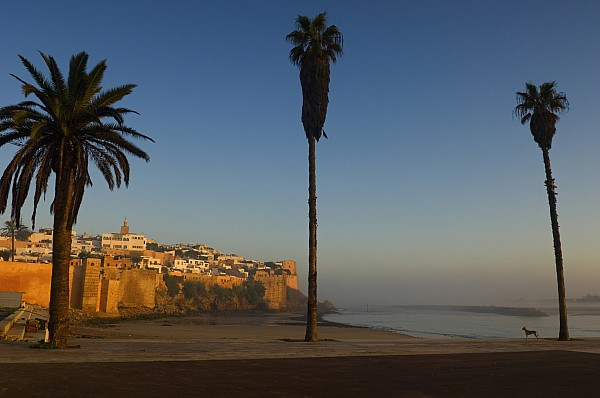 Kasbah Des Oudaias, Rabat Print by Axiom Photographic