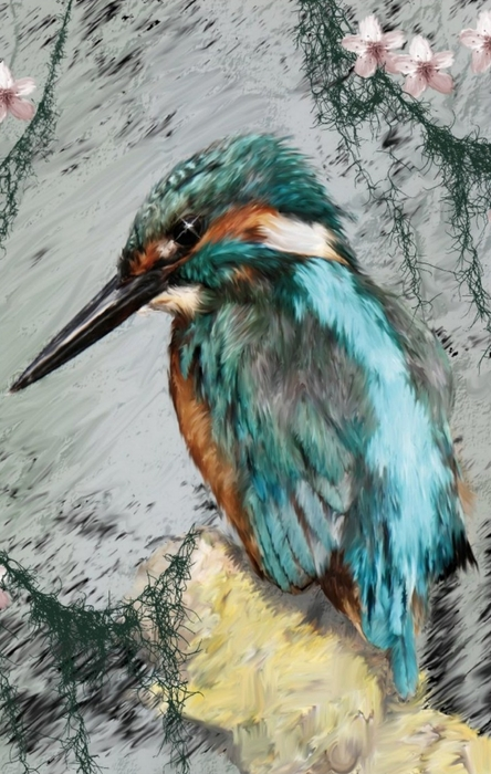 Shannon Story - King Fisher