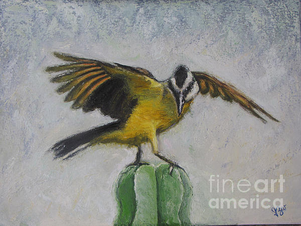 Kiskadee On Cactus Print by Judith Zur