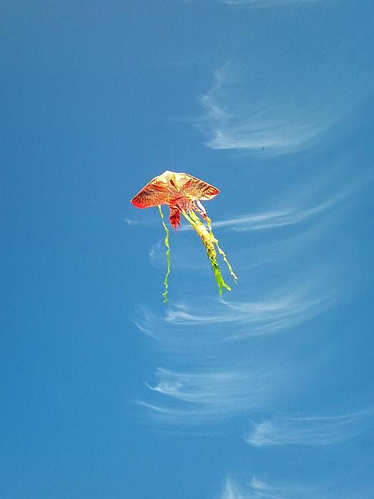 Kite Sky Print by Phuong Tu