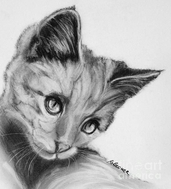 Kitten Cameo Print by Susan A Becker