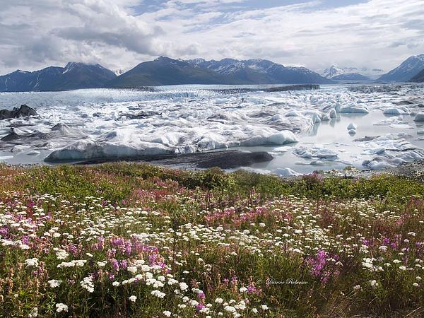 Dianne Roberson - Knik Glacier