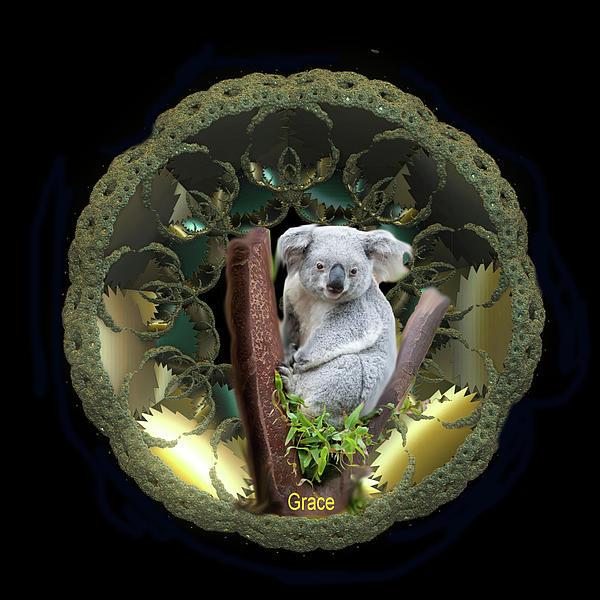 Koala Print by Julie  Grace