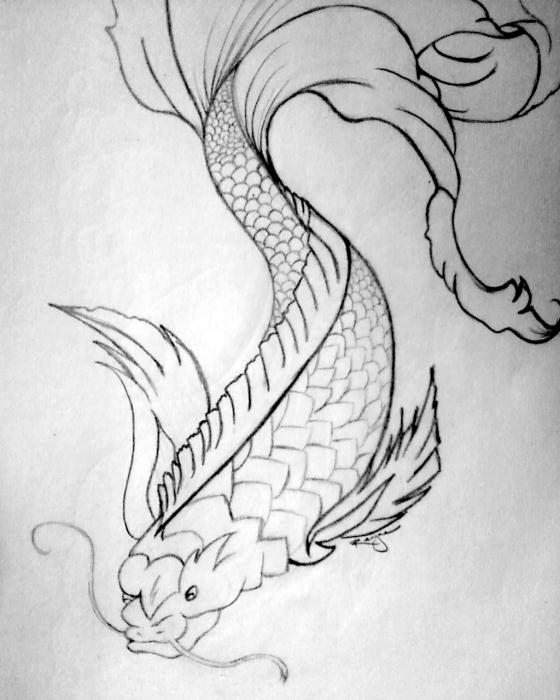 Everett piccolo koi fish drawing by kurttepes for Koi fish drawing