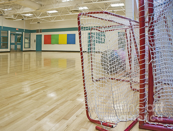 Lacrosse Goals In A Gymnasium Print by Marlene Ford