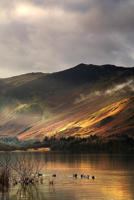 Lake In Cumbria, England Print by John Short