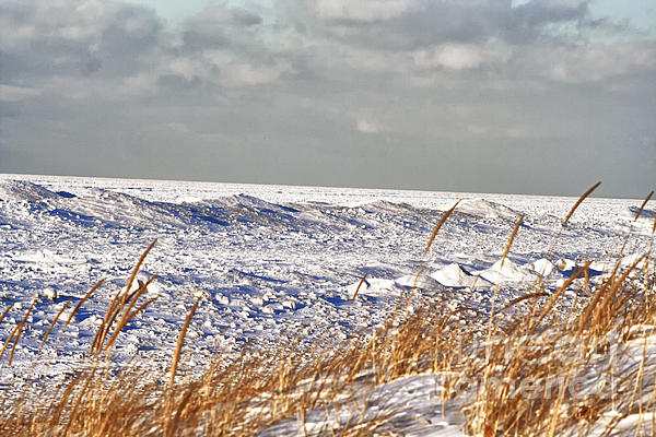 Lake Michigan On Ice Print by Christopher Purcell