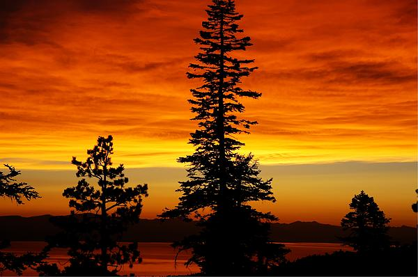 Lake Tahoe Sunset Print by Bruce Friedman