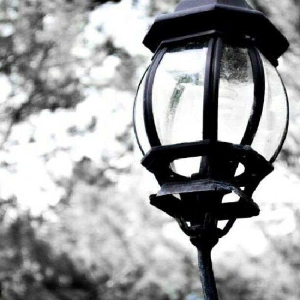 lamppost outside my house lamp by becca watters. Black Bedroom Furniture Sets. Home Design Ideas