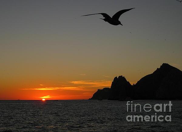 Land's End Sunset Print by Judee Stalmack