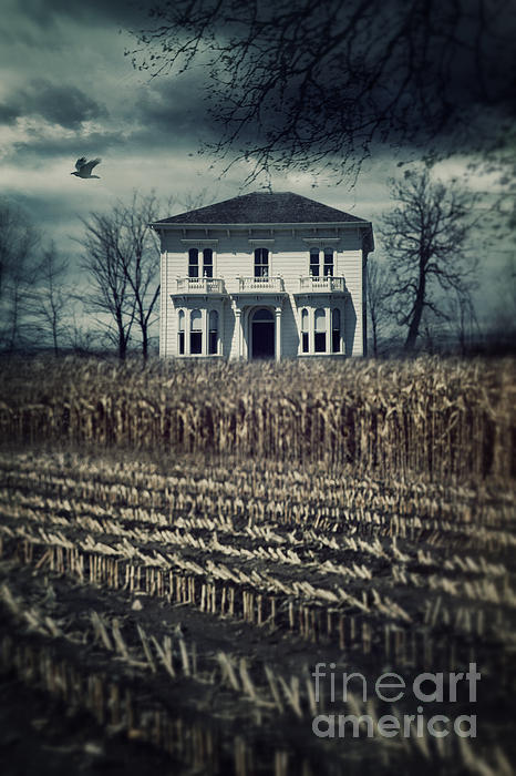 Large Old Country House At The End Of Corn Field Print By
