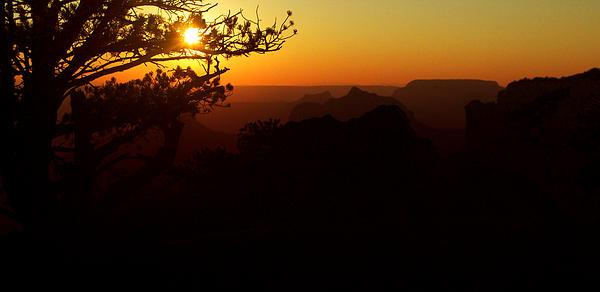 Ellen Heaverlo - Last Golden Rays - Grand Canyon