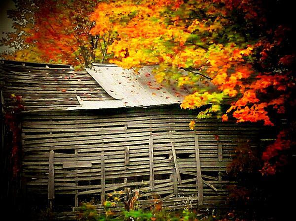 Michael L Kimble - Leaf Barn