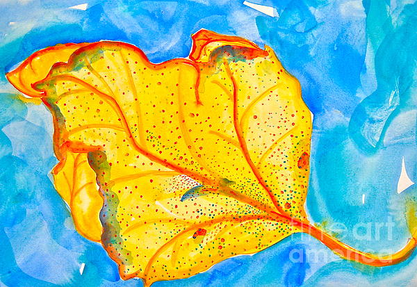 Christine Chase Cooper - Leaf on Water